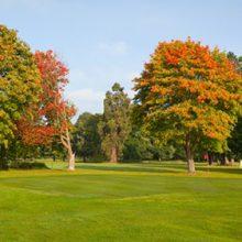 Northop Golf Club